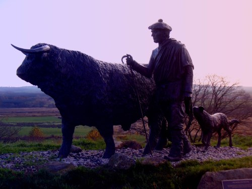 drover statue in lavender_edited-1